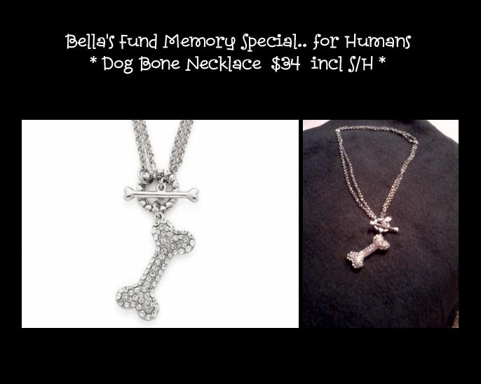 photo of Bella's Fund's dog bone necklace